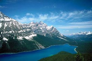 Peyto lake, one of the many reasons Icefield Parkway is a drive, not a commute.