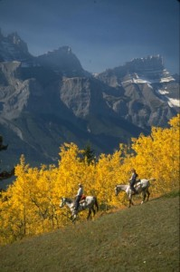 Trail Riding near Canmore