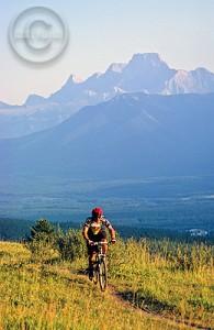 Cycle through the scenic Jasper, Alberta wilderness.