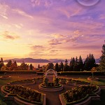 Another stunning Vancouver rose garden.