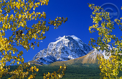 Mt Temple, Fall Photography in the Canadian Rockies