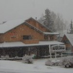 The Douglas Fir Resort - the early bird catches the worm.
