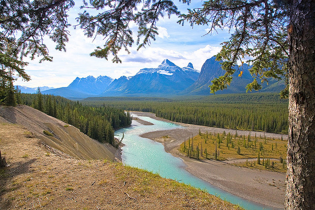 Whitewater Raft the Athabasca River in Jasper, Canada
